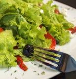 Salade met vork Stock Afbeeldingen
