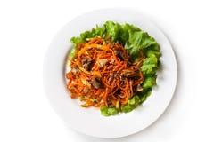 Salade met wortelen, vlees en greens in een plaat op een ge?soleerde witte achtergrond stock afbeeldingen