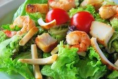 Salade met zeevruchten Royalty-vrije Stock Foto