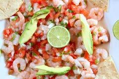 Salade Mexique de fruits de mer crus de ceviche de crevette de Camaron Photographie stock