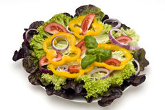 Salade mixte 2 Photographie stock