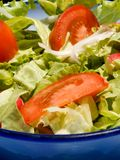 Salade mixte Photos stock