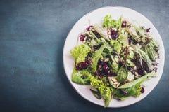 Salade mixte avec des canneberges Photographie stock