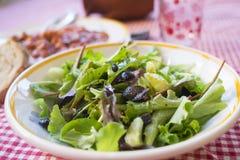Salade mixte avec des verts sauvages Photographie stock libre de droits