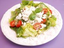 Salade mixte avec du feta images libres de droits