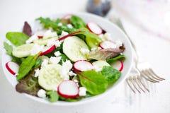 Salade mixte avec les feuilles de bébé, le radis, le concombre et le feta Image libre de droits
