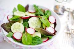 Salade mixte avec les feuilles, le radis et le concombre de bébé Image stock