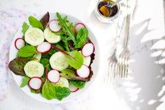 Salade mixte avec les feuilles, le radis et le concombre de bébé Images libres de droits