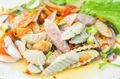 Salade mixte, salade de saucisse ou salade épicée photographie stock libre de droits