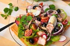 Salade Nicoise avec des saumons Photographie stock libre de droits
