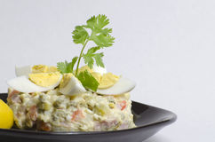 Salade olivier Photo libre de droits