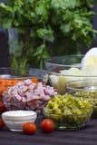 Salade Olivier - ingrédients Photographie stock libre de droits