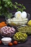 Salade Olivier - ingrediënten Stock Afbeeldingen