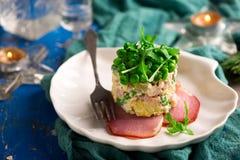 Salade Olivier, Russische salade stock afbeelding