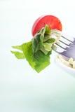 Salade op de vork Stock Fotografie