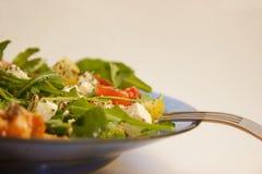 Salade op een plaat Stock Afbeeldingen