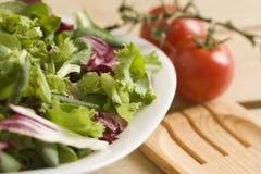 Salade op houten lijst Stock Foto