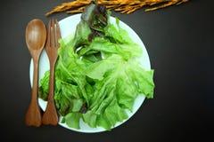 Salade op houten schotel op katoenen witte achtergrond Royalty-vrije Stock Fotografie