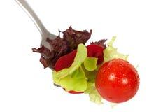 Salade op vork Royalty-vrije Stock Fotografie