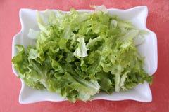 Salade in plaat Stock Foto