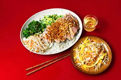 Salade rôtie de canard, de mangue et de légume Images stock