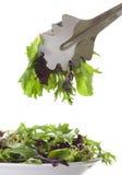 Salade remplissante dans la cuvette blanche, d'isolement sur le blanc images stock