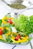 Salade saine images libres de droits