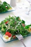 Salade saine Photo libre de droits