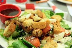 Salade saine chaleureuse photos libres de droits