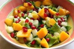 Salade saine colorée photos stock
