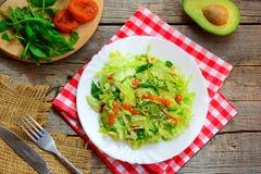 Salade saine d'avocat de chou Salade de choux fraîche facile avec l'avocat, les abricots secs, le ruccola et le sésame d'un plat Images libres de droits