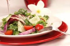 Salade saine d'une plaque rouge Photographie stock libre de droits