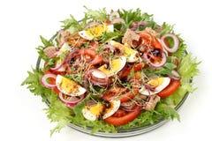 Salade saine de salade organique avec la conserve de thon, les tomates, les oeufs de poulet, l'arugula, l'oignon rouge et les mic photo stock
