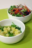 Salade saine de Vegan Image stock