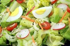 Salade saine fraîche Image stock