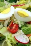 Salade saine fraîche Images stock