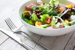 Salade saine fraîche Photos stock
