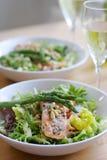 Salade saumonée Photographie stock libre de droits