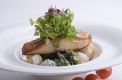 Salade saumonée desséchée Images stock