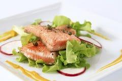 Salade saumonée grillée Image libre de droits