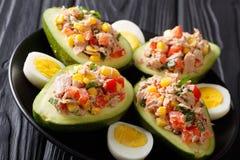 Salade savoureuse de l'avocat, du thon, des oeufs et des légumes en gros plan sur a photo stock