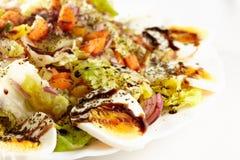 Salade savoureuse de la Toscane Photographie stock libre de droits