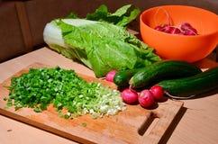 Salade toujours de la vie Photo libre de droits