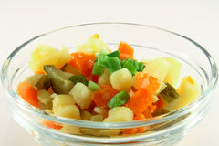 Salade végétale photographie stock libre de droits