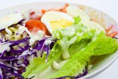 Salade végétale Photo libre de droits