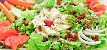 Salade végétale Photographie stock