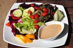 Salade végétale. Photos libres de droits