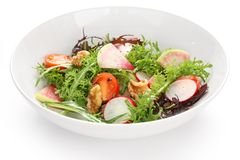 Salade végétale colorée image libre de droits