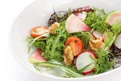 Salade végétale colorée images libres de droits
