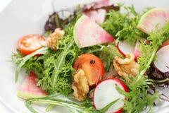 Salade végétale colorée photographie stock libre de droits